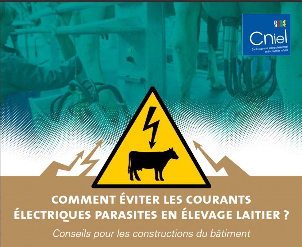 Comment éviter les courants électriques parasites en élevage laitier ?