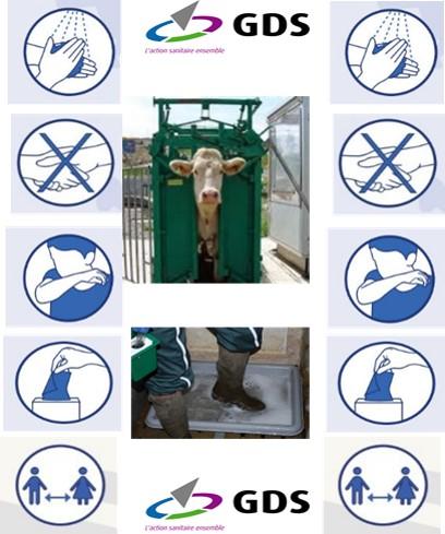 3/04/2020 : Covid19 – Protéger sa santé et celle des intervenants en élevage